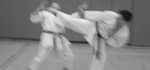 Ura-Mawashi-Geri Yodan
